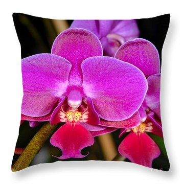 Orchid 422 Throw Pillow