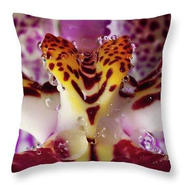 Damon Clarke Throw Pillows