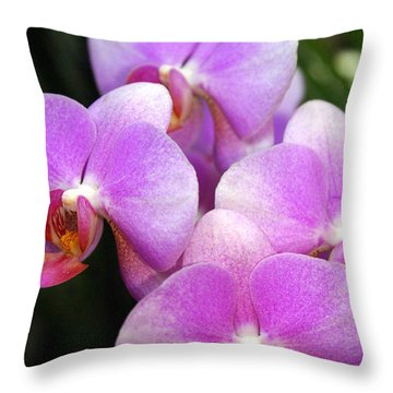 Orchid 5 Throw Pillow by Marty Koch