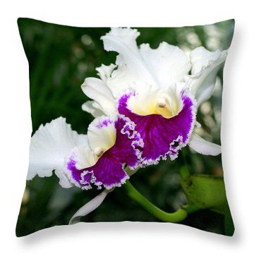 Orchid 6 Throw Pillow by Marty Koch