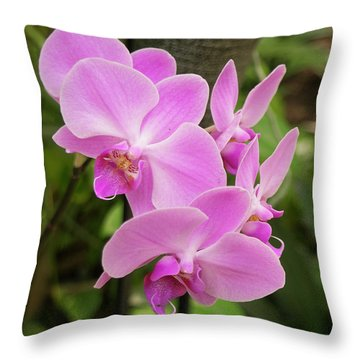 Throw Pillow featuring the photograph Orchid #6 by Michael Colgate