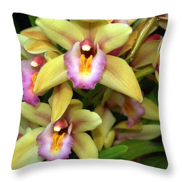 Orchid 7 Throw Pillow by Marty Koch