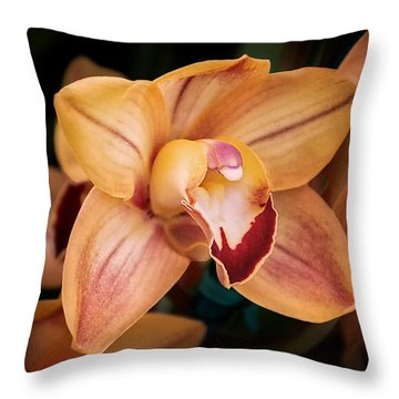 Orchid - A Quiet Elegance Throw Pillow