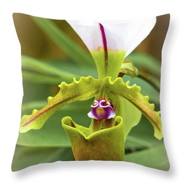 Throw Pillow featuring the photograph Orchid Allure by Richard Goldman