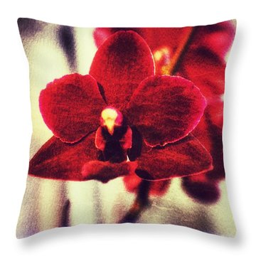 Throw Pillow featuring the photograph Orchid Alone by Isabella F Abbie Shores FRSA