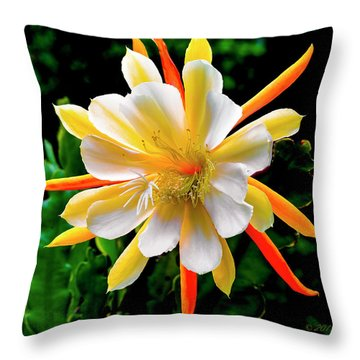 Orchid Cactus Epiphyllum Throw Pillow
