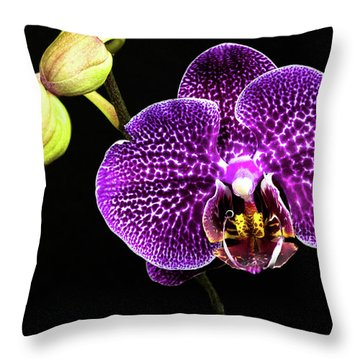 Orchid Throw Pillow by Christopher Holmes