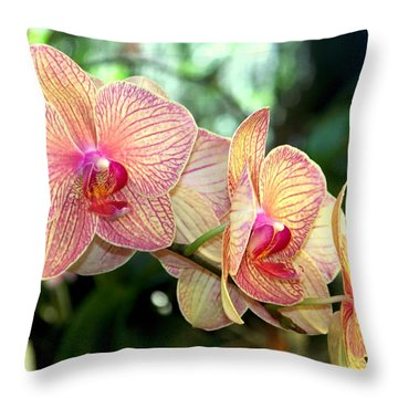 Orchid Delight Throw Pillow by Karen Wiles