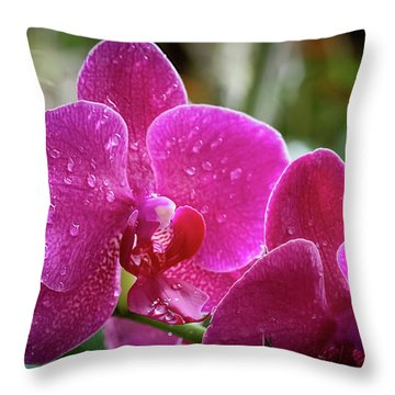 Orchid Dew Throw Pillow