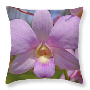 Orchid Flower Throw Pillow by Kenneth Albin
