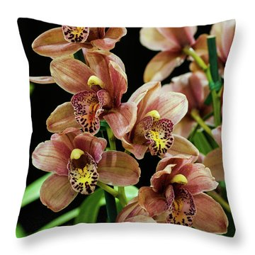 Throw Pillow featuring the photograph Orchid Flowers  by Catherine Lau