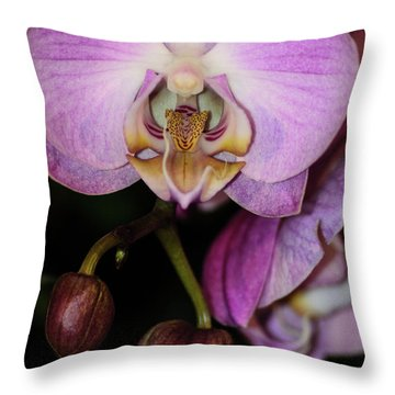 Orchid Life Throw Pillow