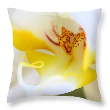 Orchid Macro Throw Pillow by Jared Shomo
