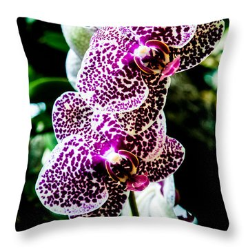 Orchid - Pla236 Throw Pillow