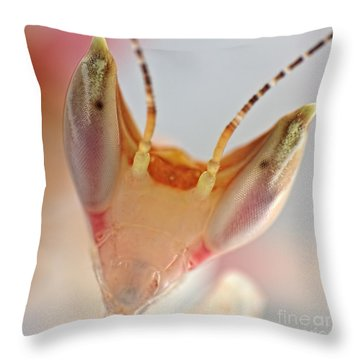 Throw Pillow featuring the photograph Orchid Praying Mantis by Joerg Lingnau