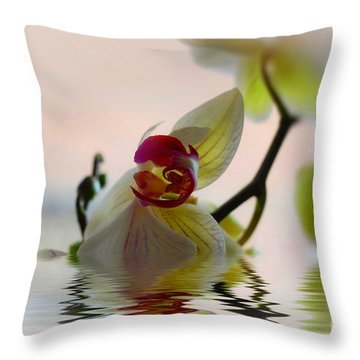 Throw Pillow featuring the photograph Orchid Reflection by Elaine Manley