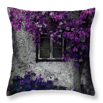 Orchid Vines Window And Gray Stone Throw Pillow