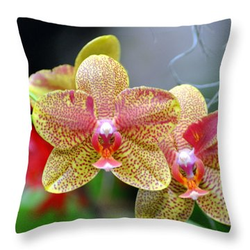 Orchids 35 Throw Pillow by Marty Koch