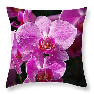 Orchids 4 Throw Pillow by Karen McKenzie McAdoo