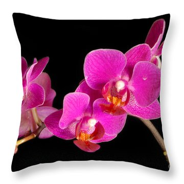 Throw Pillow featuring the photograph Orchids by Alana Ranney