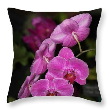 Orchids Alicia Throw Pillow