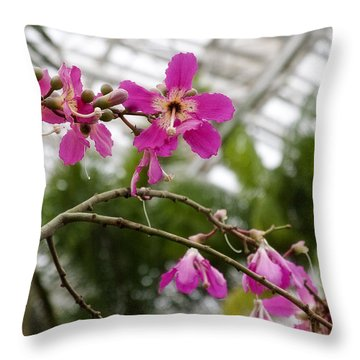 Orchids Myriad Botanical Gardens Okc Throw Pillow by Toni Hopper