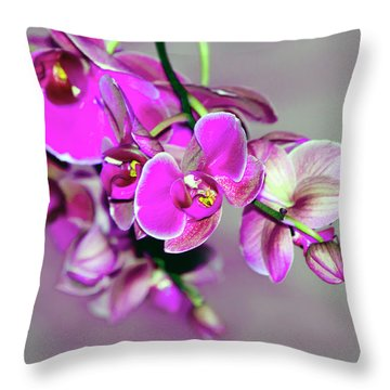 Throw Pillow featuring the photograph Orchids On Gray by Ann Bridges