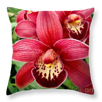 Orchids Up Close Throw Pillow