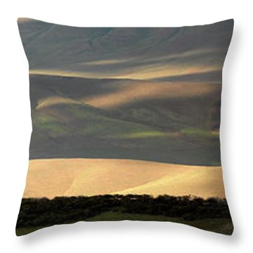 Oregon Canyon Mountain Layers And Textures Throw Pillow by Leland D Howard