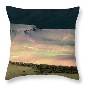 Oregon Canyon Mountain Layers Throw Pillow by Leland D Howard