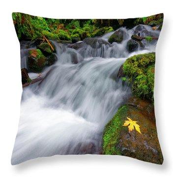 Throw Pillow featuring the photograph Oregon Cascade by Jonathan Davison