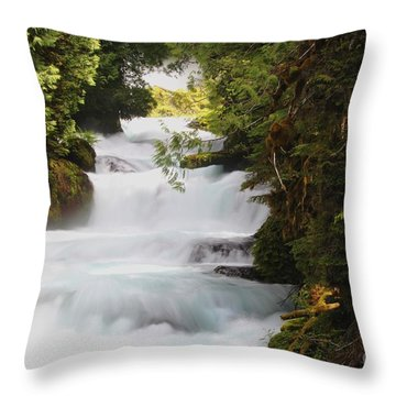 Oregon Cascade Throw Pillow