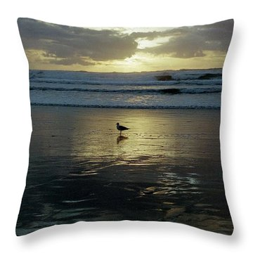 Oregon Coast 3 Throw Pillow