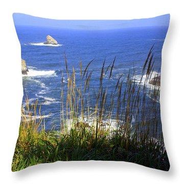 Oregon Coast 4 Throw Pillow by Marty Koch