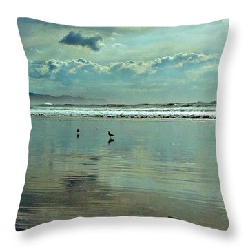 Oregon Coast 6 Throw Pillow