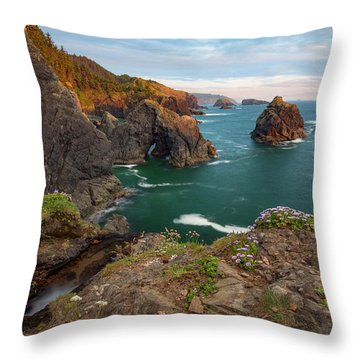 Oregon Coastal Scenic Throw Pillow by Leland D Howard