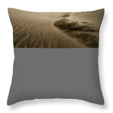 Oregon Dune Wasteland 1 Throw Pillow by Ryan Manuel