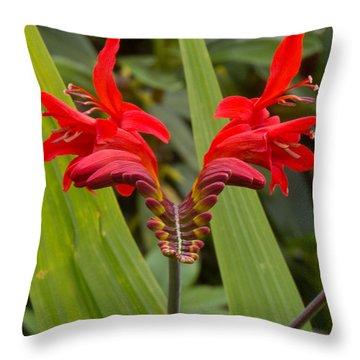 Oregon Flower 1 Throw Pillow