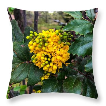 Oregon Grape At Sullivan Park Throw Pillow