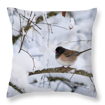 Oregon Junko In Snow Throw Pillow by Brian Bonham
