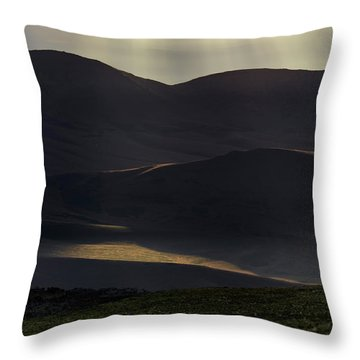 Oregon Mountains 1 Throw Pillow by Leland D Howard