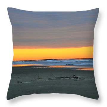 Oregon Orange  Throw Pillow by Mindy Bench
