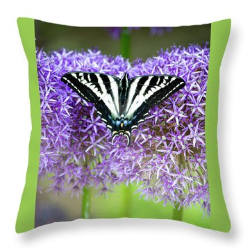 Throw Pillow featuring the photograph Oregon Swallowtail by Bonnie Bruno