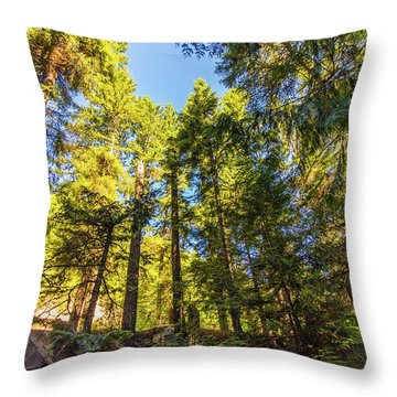 Throw Pillow featuring the photograph Oregon Trees by Jonny D