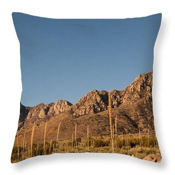 Organ Mountans At Sunrise-3 Throw Pillow