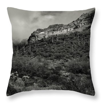 Arches National Monument Throw Pillows
