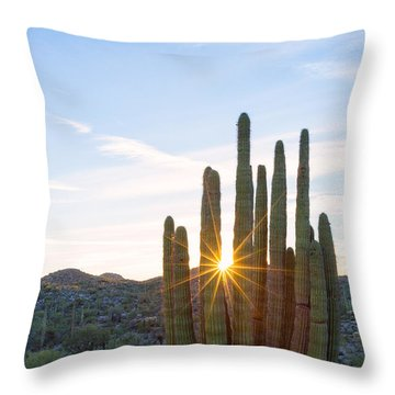 Throw Pillow featuring the photograph Organ Pipe Cactus by Patricia Davidson