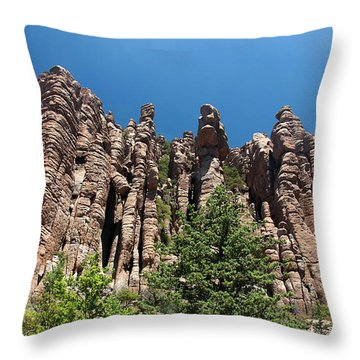 Throw Pillow featuring the photograph Organ Pipes by Joe Kozlowski