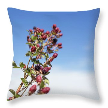 Organic Handpicked Home Orchard Raspberries,blackberries From Bu Throw Pillow