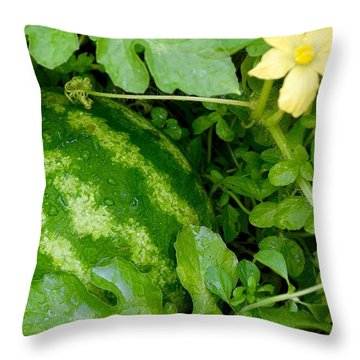 Organic Watermelon Throw Pillow